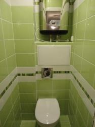 <p><em><strong>Ремонт и отделка туалета: дизайн санузла туалета ШК-салатовый.</strong></em></p>