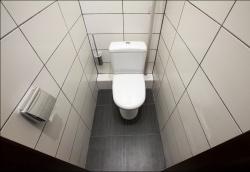 <p><em><strong>Ремонт и отделка туалета: дизайн туалета с белым кафелем.</strong></em></p>