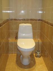 <p><em><strong>Ремонт и отделка туалета: скромно со вкусом.</strong></em></p>