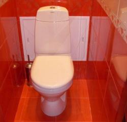 <p><em><strong>Ремонт и отделка туалета: туалет в морковный тонах.</strong></em></p>