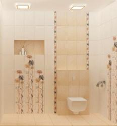 <p><em><strong>Ремонт и отделка туалета: wc дизайн большого туалета.</strong></em></p>