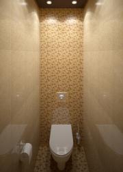 Ремонт и отделка туалета: wc дизайн санузла туалета.