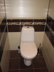 <p><em><strong>Ремонт и отделка туалета: дизайн туалета&nbsp; Цвет шоколадный.</strong></em></p>