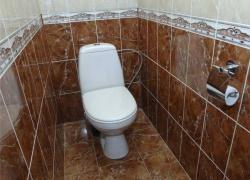 Ремонт и отделка туалета: wc дизайн санузла туалета - коричневый.