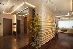 <p>Ремонт квартир: большие прихожие фото</p>